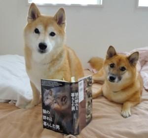 えへ! あたちたちのご先祖しゃまの本だじょ!