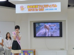 動物愛護フェス20132